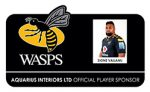 Aquarius-Wasps-Player